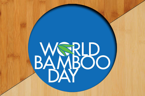 Celebrate World Bamboo Day with Our Solid Kitchen Worktops