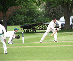 Six For Six: Frocester Cricket Club Update