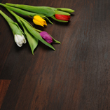 Here's a closer look at the grain patterns and intensely dark colouration of our fantastic wenge worktop.