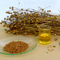Linseed and tung oil is the basis of most worktop oils, but on their own can take a long time to cure.
