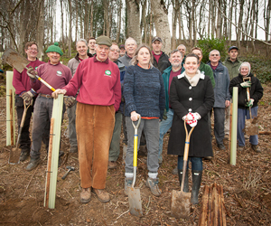 Planting a variety of tree species in Ham Hill Country Park, Somerset.