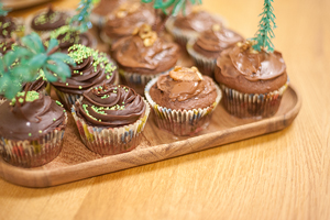 What better way to promote the importance of responsible forestry than with tree-inspired cupcakes?